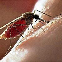 средства от укусов комаров